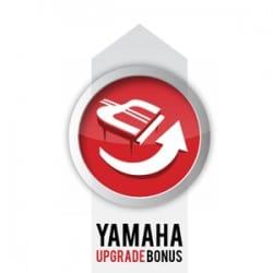 Yamaha Silent Upgrade Blog Image