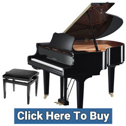 Yamaha Transacoustic Pianos at Rimmers Music