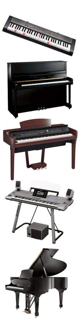 Pianos & Keyboards Available at Rimmers Music