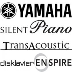 Yamaha Hybrid Pianos at Rimmers Music