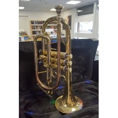 Artemis 39252 Cornet | Ex Display